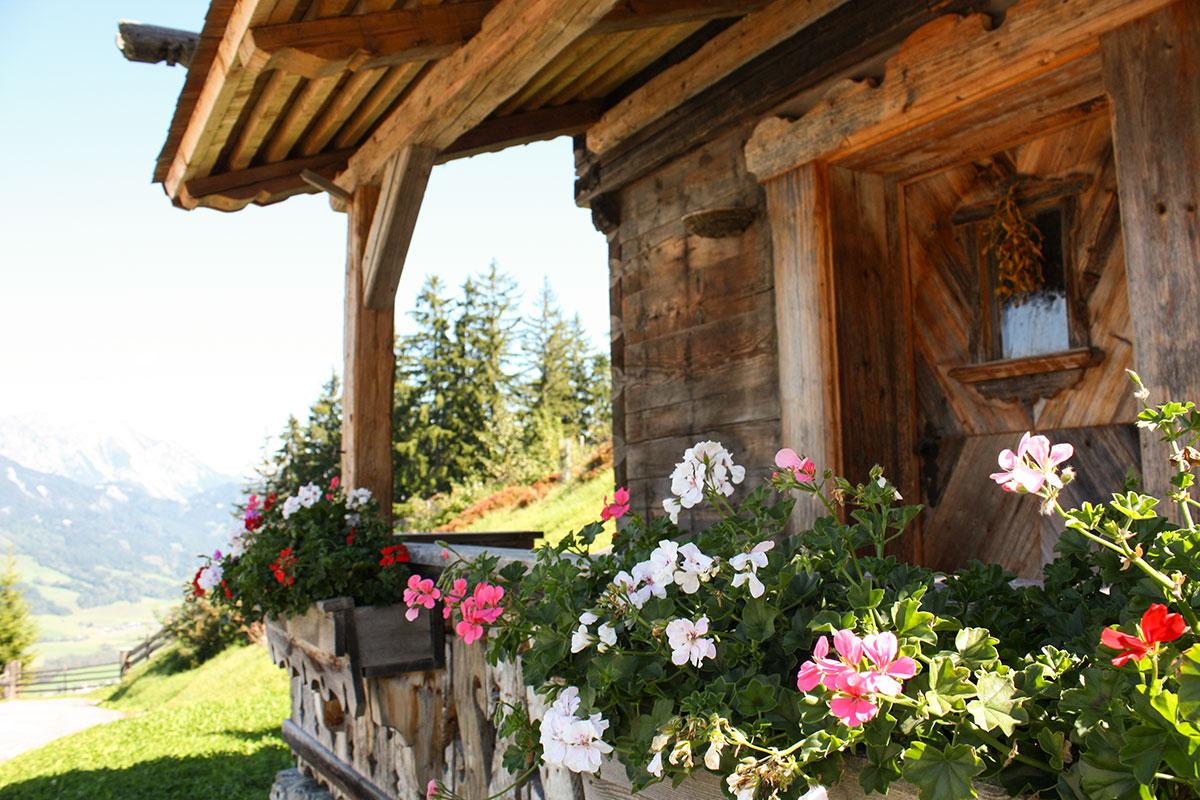 Troatkosten - Urlaub am Hauser Kaibling, Steiermark